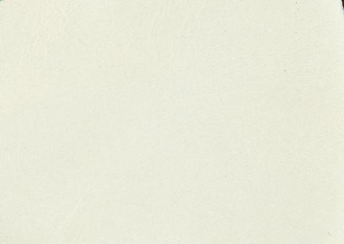 Aden albume digitale piele alb