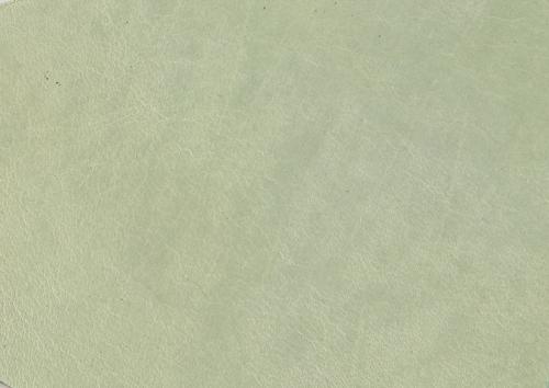 Aden albume digitale piele alb-verzui