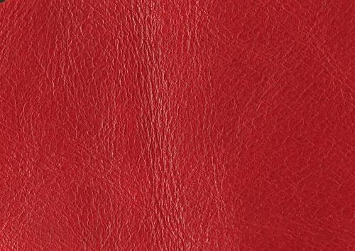 Aden albume digitale piele rosu englez