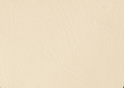 Aden albume digitale piele alb-crem
