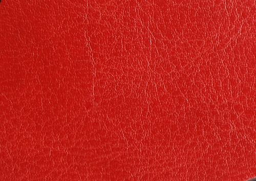 Aden albume digitale piele rosu
